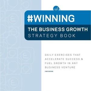 A workbook by business-whisperer Nicole Valentine.